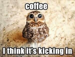 coffee-kicking-in